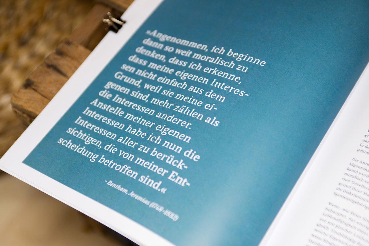 Yasemin-Ikibas-Grafikdesign-Würzburg-Firmen-Gestaltung-Fotografie-(12)